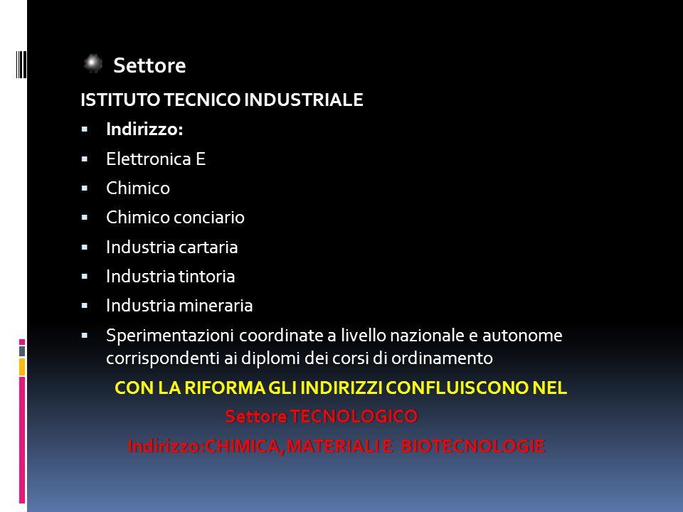 Settore ISTITUTO TECNICO INDUSTRIALE Indirizzo: Elettronica E Chimico