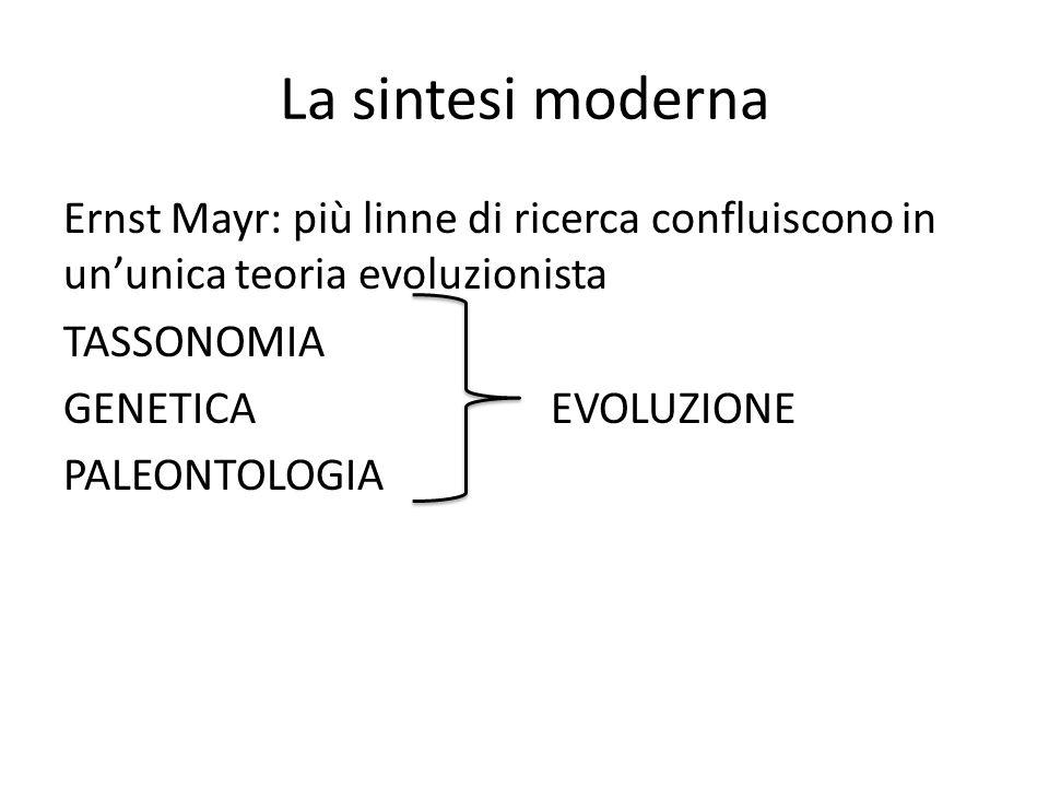 La sintesi moderna Ernst Mayr: più linne di ricerca confluiscono in un'unica teoria evoluzionista TASSONOMIA GENETICA EVOLUZIONE PALEONTOLOGIA