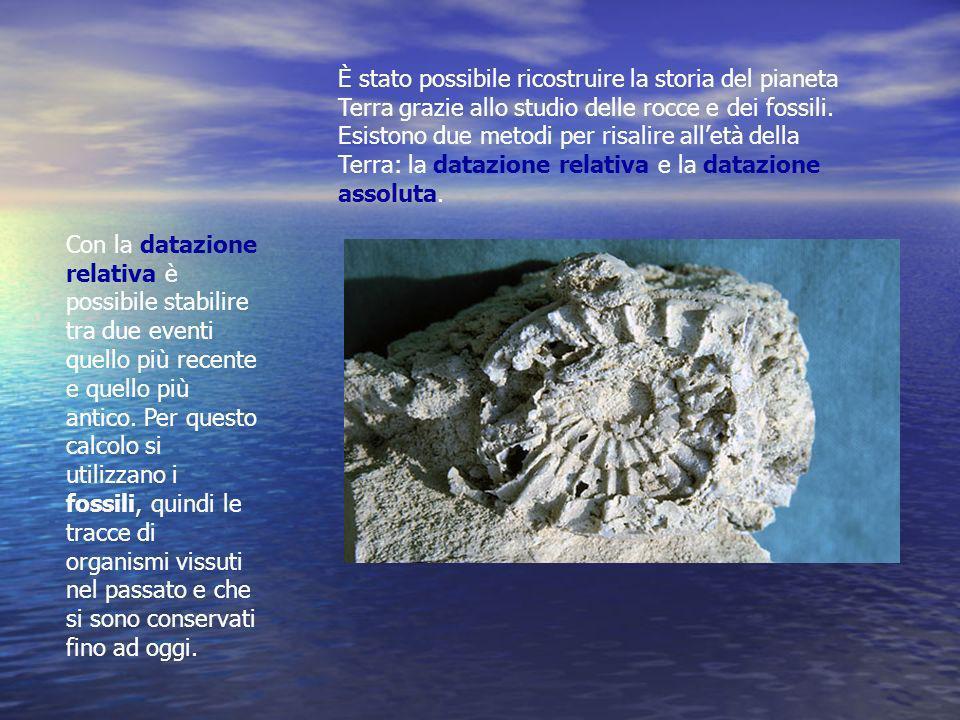 È stato possibile ricostruire la storia del pianeta Terra grazie allo studio delle rocce e dei fossili.