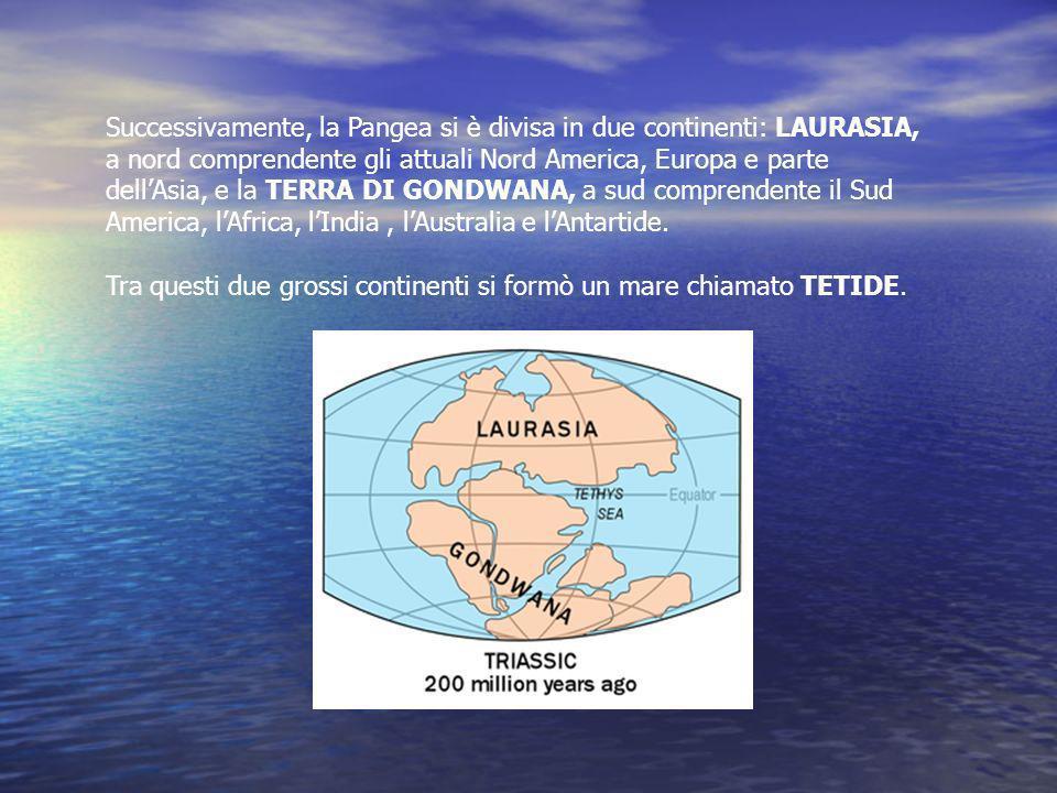 Successivamente, la Pangea si è divisa in due continenti: LAURASIA, a nord comprendente gli attuali Nord America, Europa e parte dell'Asia, e la TERRA DI GONDWANA, a sud comprendente il Sud America, l'Africa, l'India , l'Australia e l'Antartide.