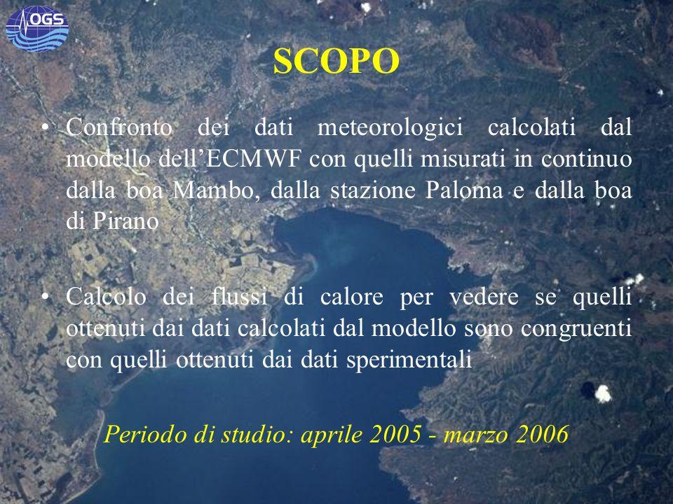 Periodo di studio: aprile 2005 - marzo 2006