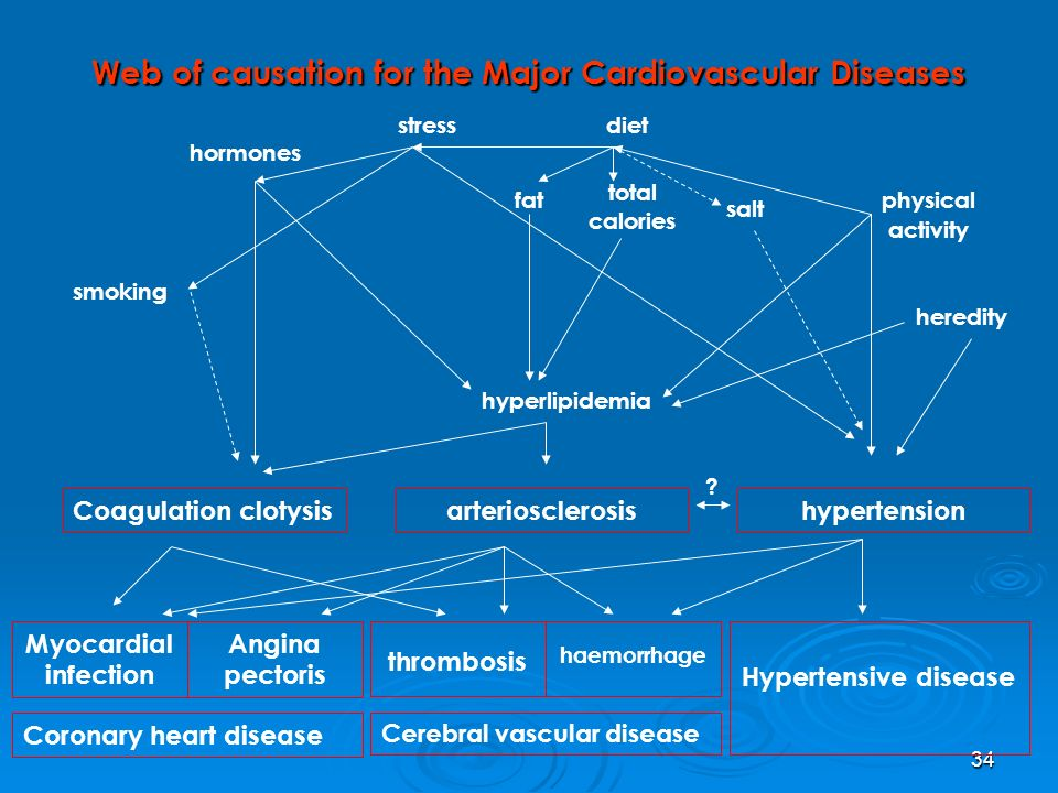 Web of causation for the Major Cardiovascular Diseases