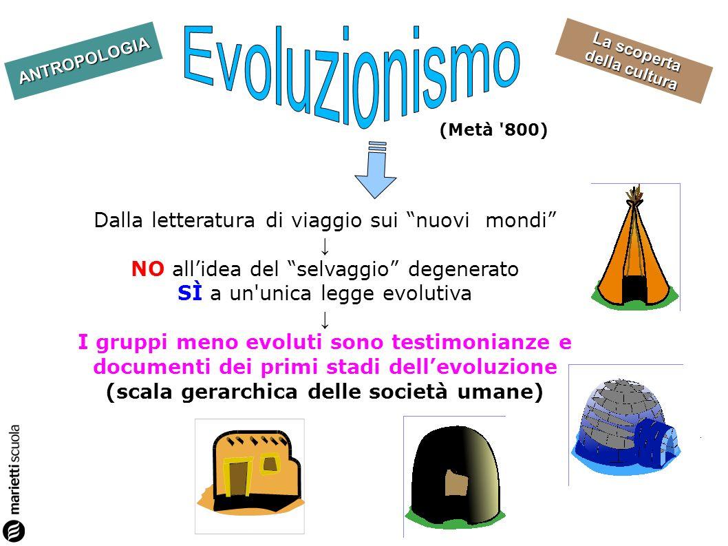 Evoluzionismo Dalla letteratura di viaggio sui nuovi mondi ↓