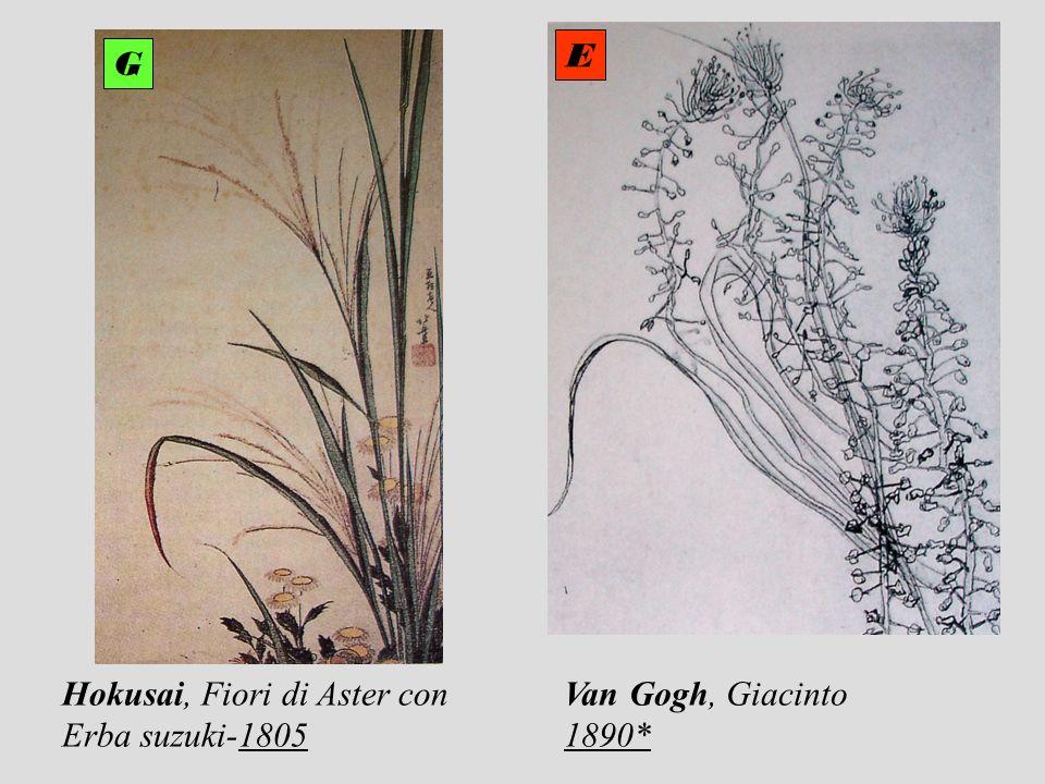 E G Hokusai, Fiori di Aster con Erba suzuki-1805 Van Gogh, Giacinto 1890*