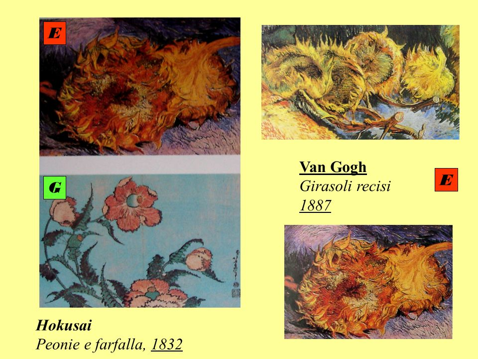 E Van Gogh Girasoli recisi 1887 E G Hokusai Peonie e farfalla, 1832