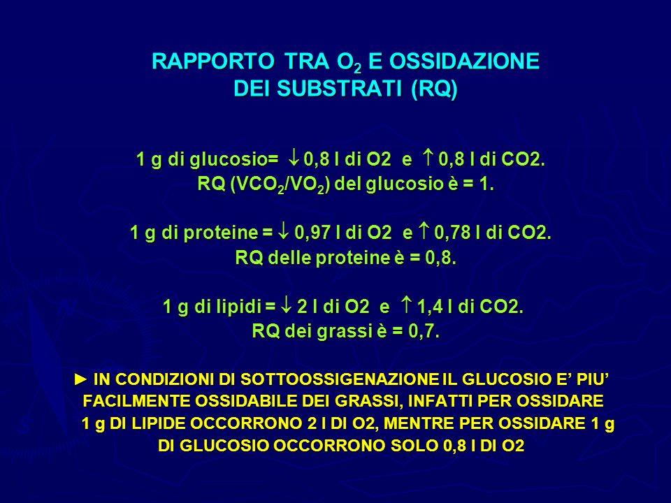 RAPPORTO TRA O2 E OSSIDAZIONE DEI SUBSTRATI (RQ)
