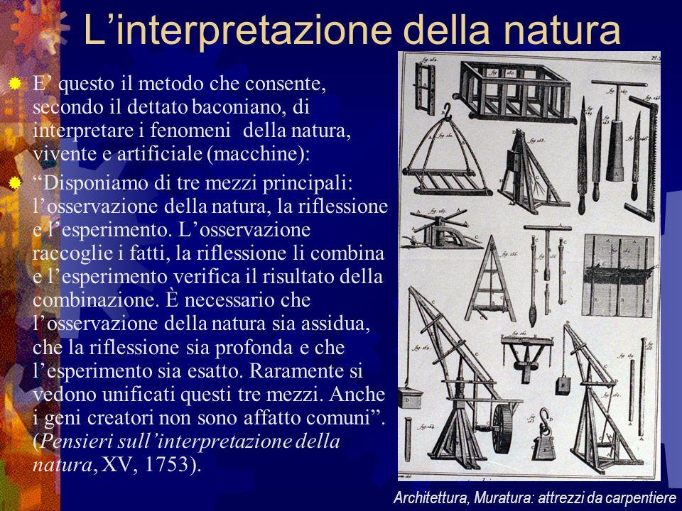 L'interpretazione della natura