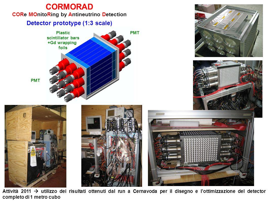CORMORAD Detector prototype (1:3 scale)