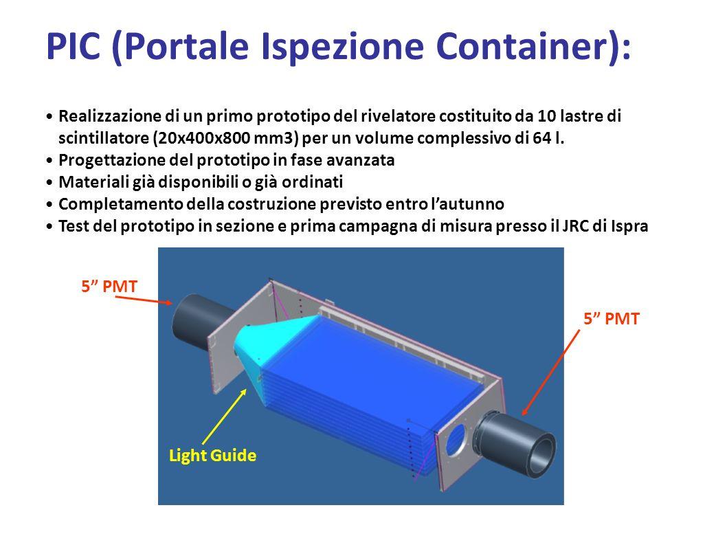 PIC (Portale Ispezione Container):