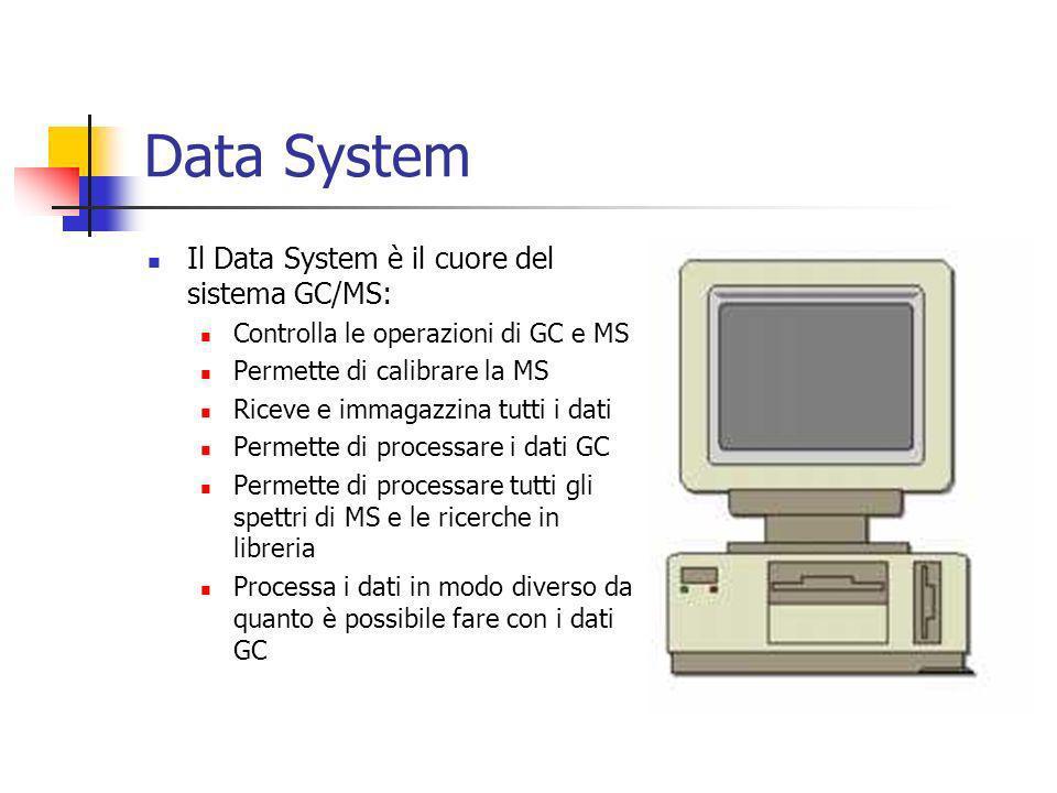 Data System Il Data System è il cuore del sistema GC/MS: