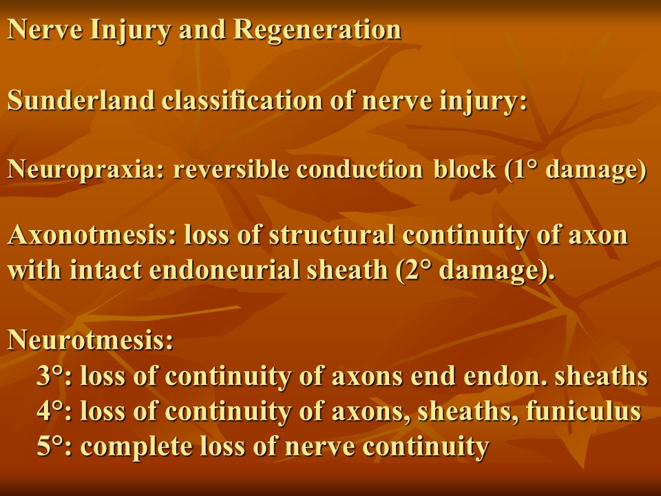 Nerve Injury and Regeneration Sunderland classification of nerve injury: Neuropraxia: reversible conduction block (1° damage) Axonotmesis: loss of structural continuity of axon with intact endoneurial sheath (2° damage).
