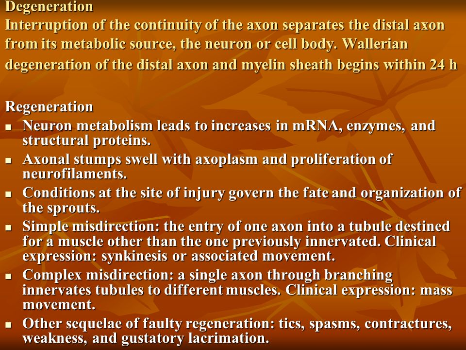 Degeneration Interruption of the continuity of the axon separates the distal axon from its metabolic source, the neuron or cell body. Wallerian degeneration of the distal axon and myelin sheath begins within 24 h