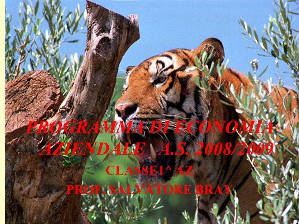 PROGRAMMA DI ECONOMIA AZIENDALE A.S. 2008/2009