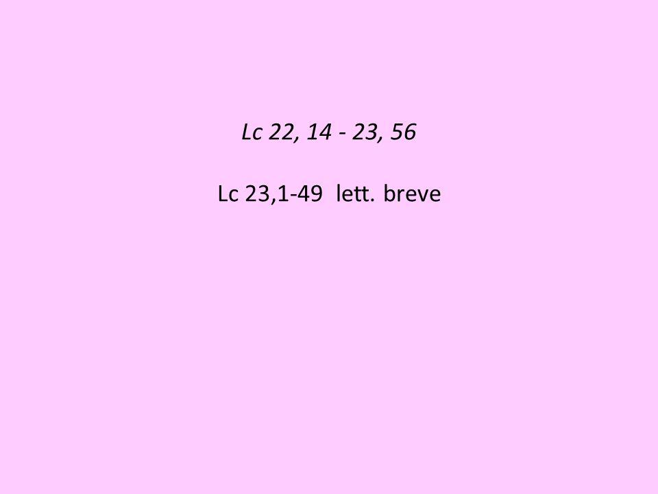 Lc 22, 14 - 23, 56 Lc 23,1-49 lett. breve