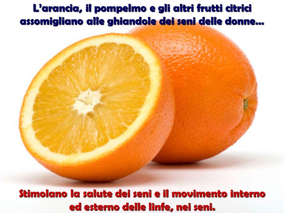 L'arancia, il pompelmo e gli altri frutti citrici