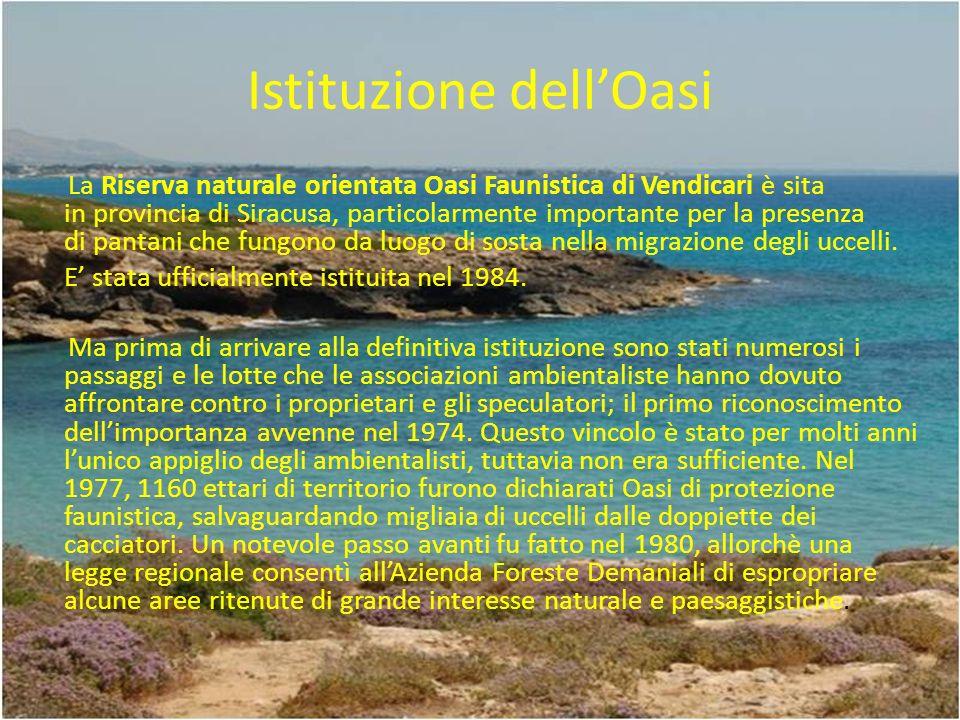 Istituzione dell'Oasi
