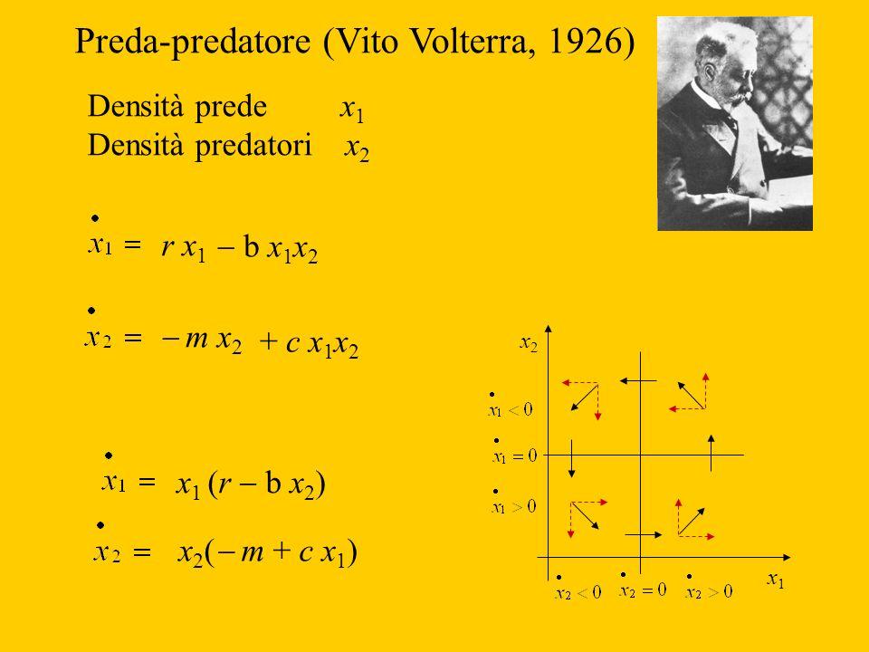 Preda-predatore (Vito Volterra, 1926)