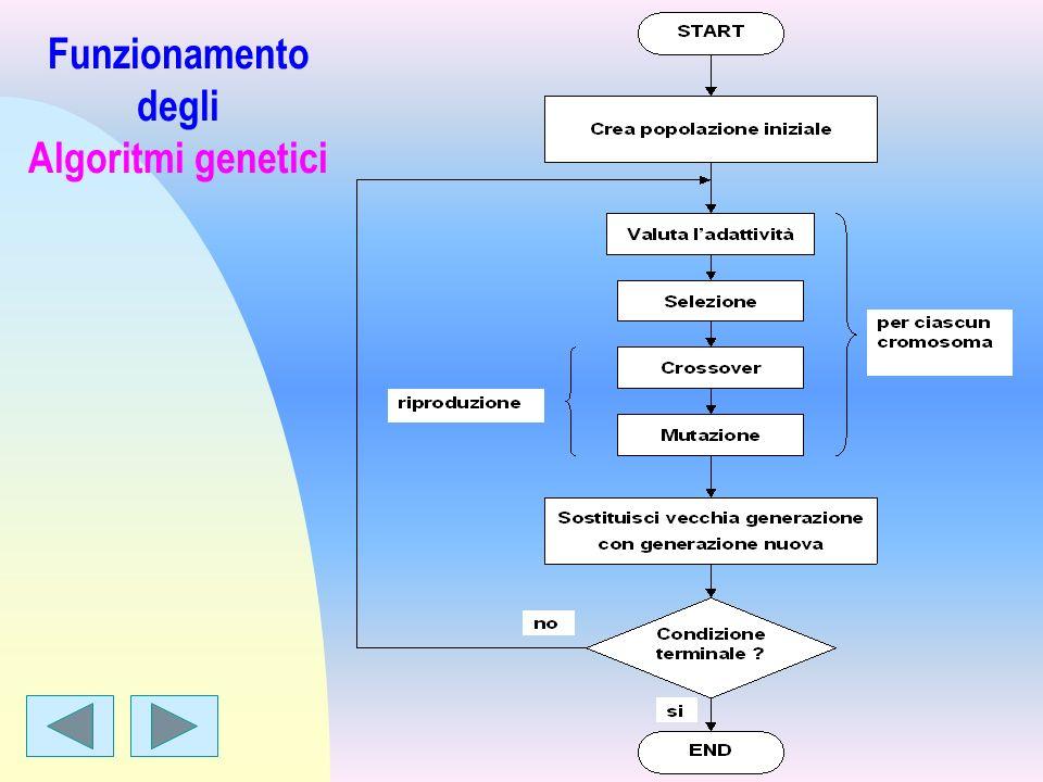 Funzionamento degli Algoritmi genetici