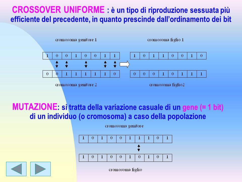 CROSSOVER UNIFORME : è un tipo di riproduzione sessuata più efficiente del precedente, in quanto prescinde dall'ordinamento dei bit