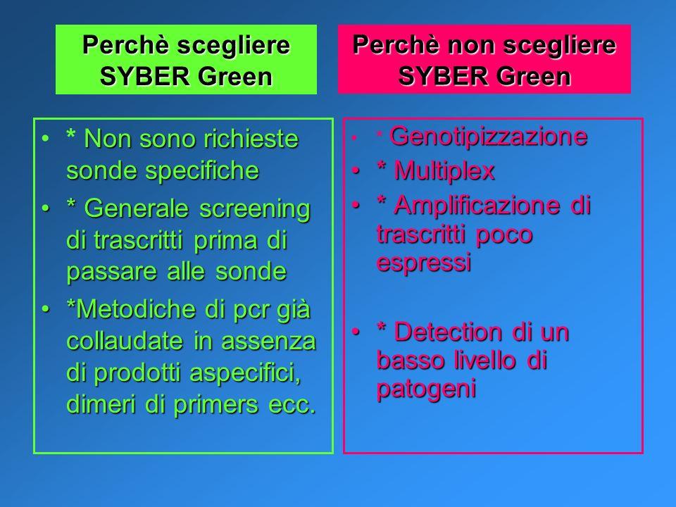 Perchè non scegliere SYBER Green