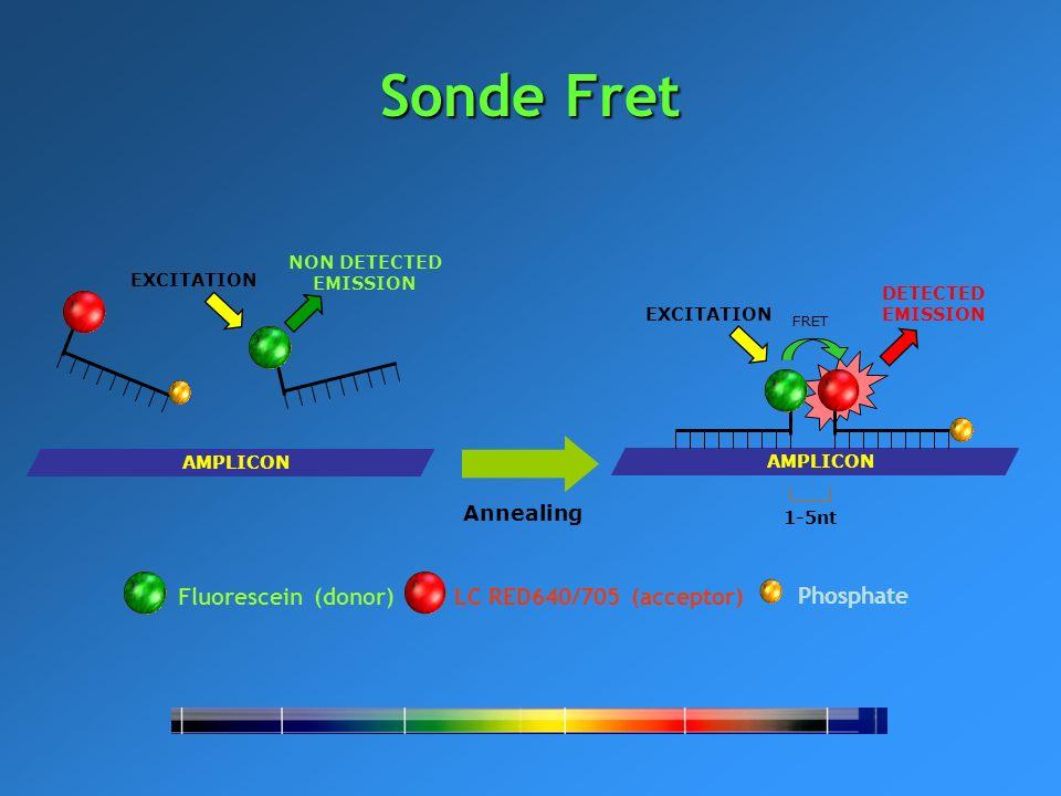 Sonde Fret Fluorescein (donor) LC RED640/705 (acceptor) Phosphate