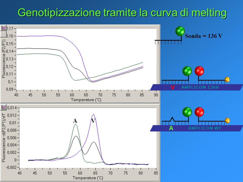 Genotipizzazione tramite la curva di melting