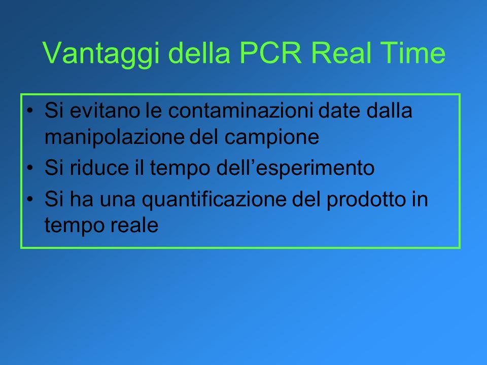 Vantaggi della PCR Real Time