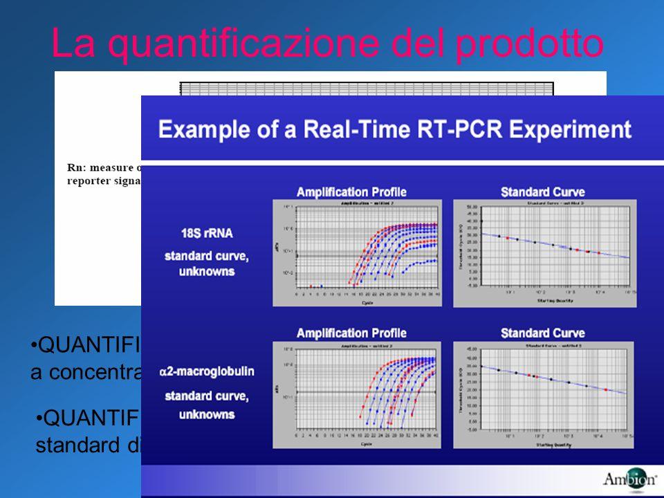 La quantificazione del prodotto