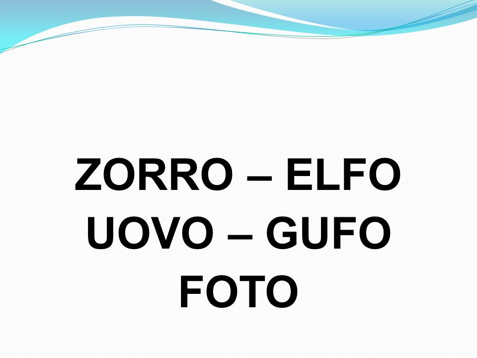ZORRO – ELFO UOVO – GUFO FOTO