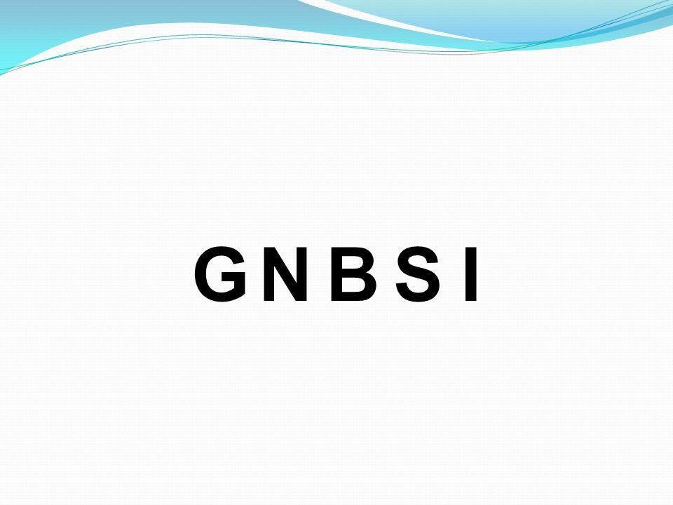 G N B S I