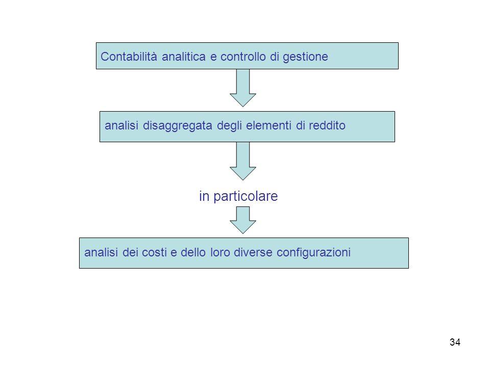 in particolare Contabilità analitica e controllo di gestione