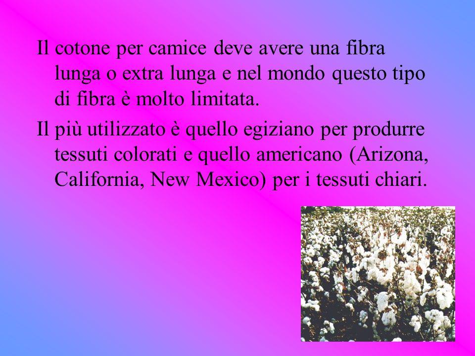 Il cotone per camice deve avere una fibra lunga o extra lunga e nel mondo questo tipo di fibra è molto limitata.