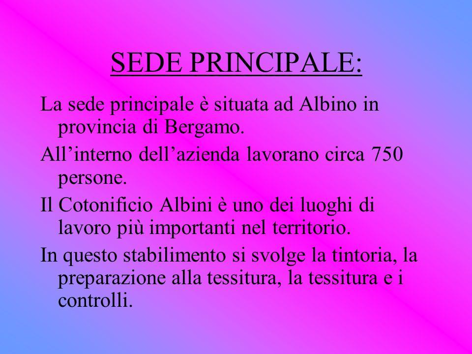 SEDE PRINCIPALE: La sede principale è situata ad Albino in provincia di Bergamo. All'interno dell'azienda lavorano circa 750 persone.