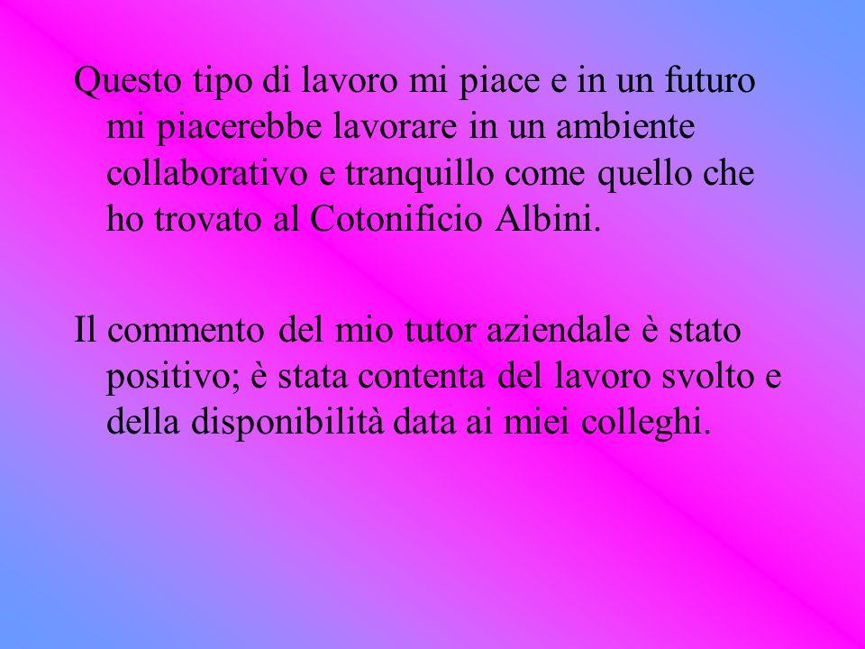 Questo tipo di lavoro mi piace e in un futuro mi piacerebbe lavorare in un ambiente collaborativo e tranquillo come quello che ho trovato al Cotonificio Albini.