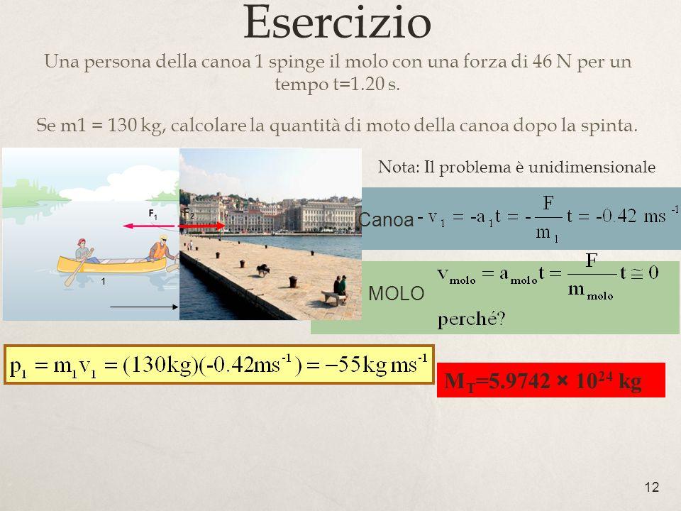 Esercizio Una persona della canoa 1 spinge il molo con una forza di 46 N per un tempo t=1.20 s.