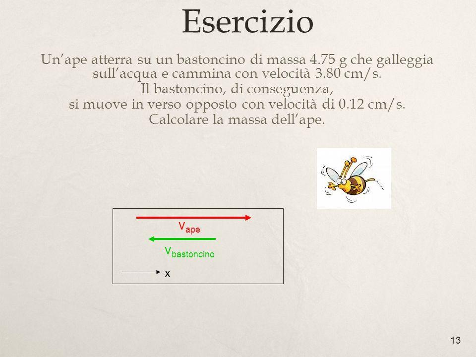 Esercizio Un'ape atterra su un bastoncino di massa 4.75 g che galleggia sull'acqua e cammina con velocità 3.80 cm/s.