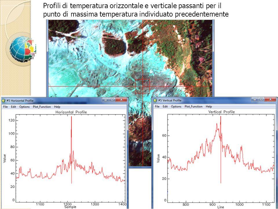 Profili di temperatura orizzontale e verticale passanti per il