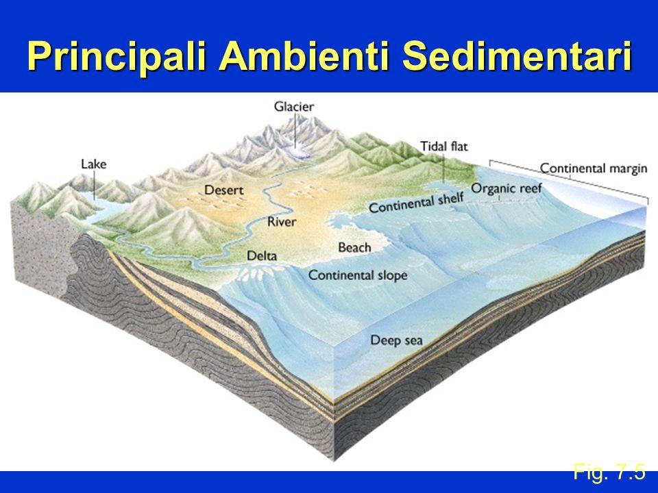 Principali Ambienti Sedimentari
