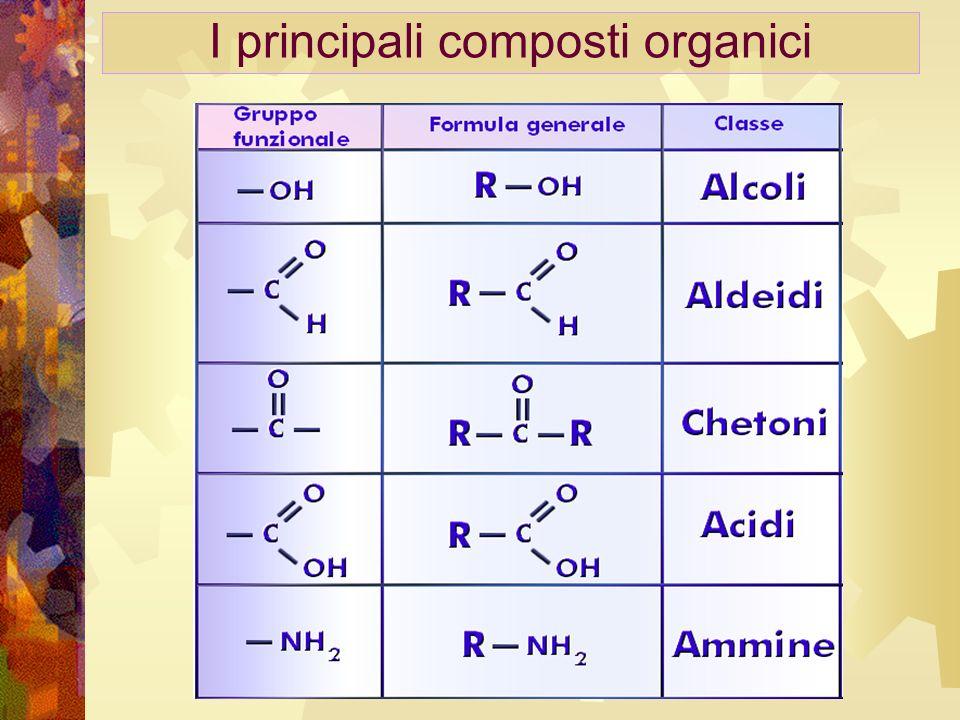 I principali composti organici