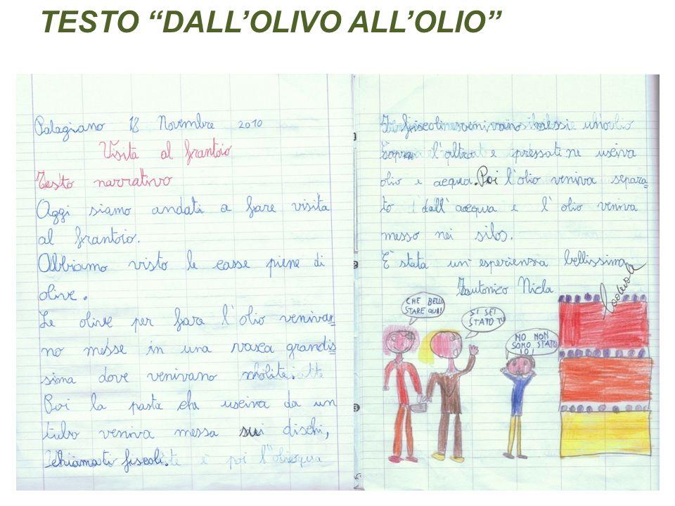 TESTO DALL'OLIVO ALL'OLIO