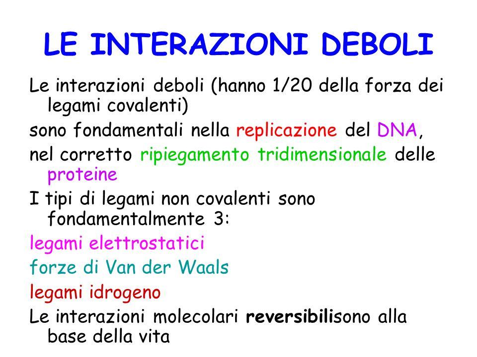 LE INTERAZIONI DEBOLI Le interazioni deboli (hanno 1/20 della forza dei legami covalenti) sono fondamentali nella replicazione del DNA,