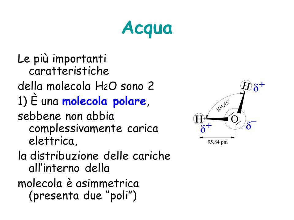 Acqua Le più importanti caratteristiche della molecola H2O sono 2