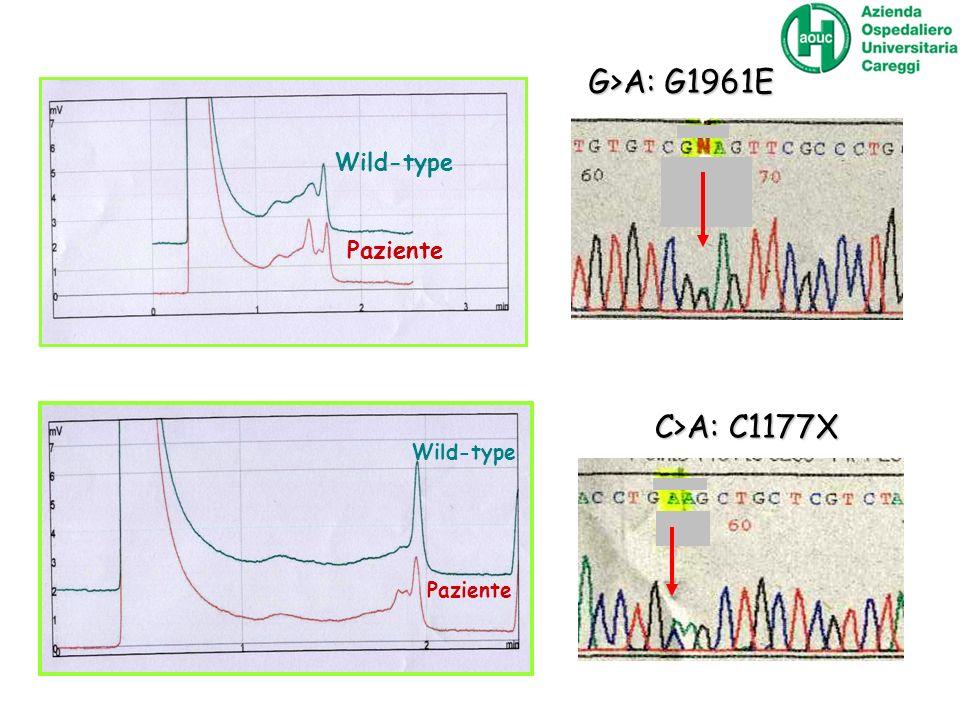 G>A: G1961E Wild-type Paziente C>A: C1177X Wild-type Paziente