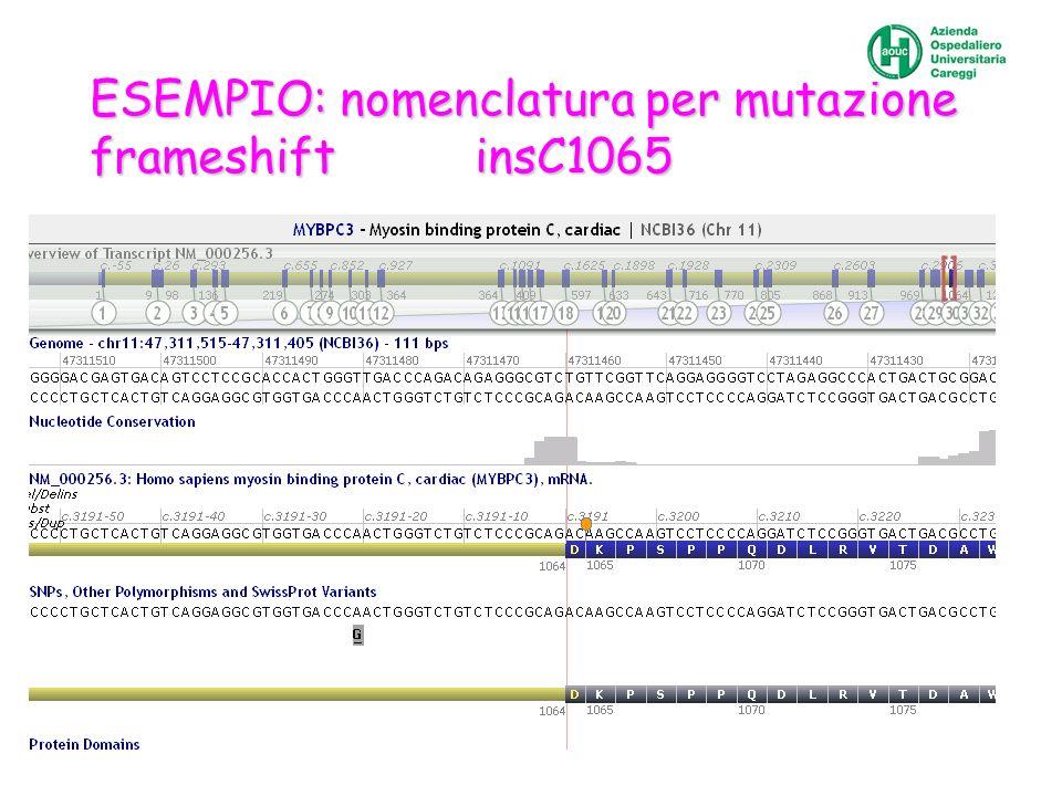 ESEMPIO: nomenclatura per mutazione