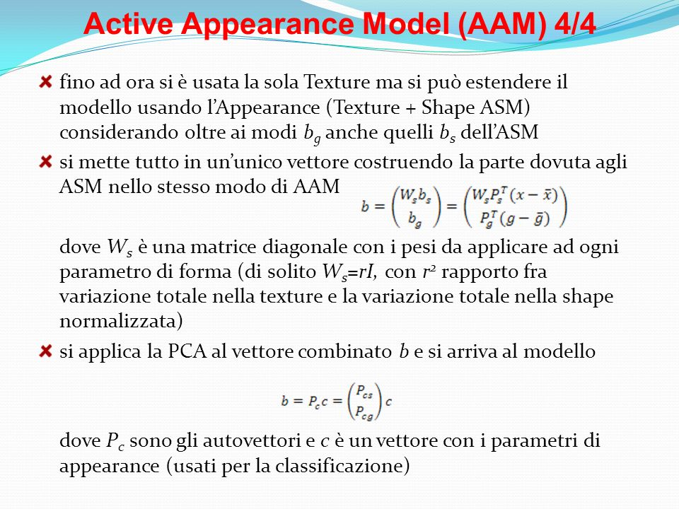 Active Appearance Model (AAM) 4/4