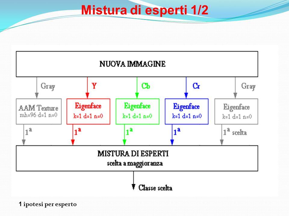 Mistura di esperti 1/2 1 ipotesi per esperto