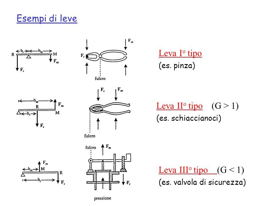 Esempi di leve Leva Io tipo Leva IIo tipo (G > 1)