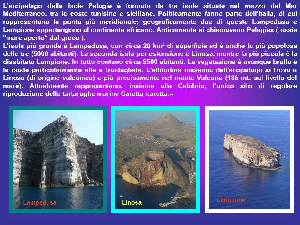 L'arcipelago delle Isole Pelagie è formato da tre isole situate nel mezzo del Mar Mediterraneo, tra le coste tunisine e siciliane. Politicamente fanno parte dell Italia, di cui rappresentano la punta più meridionale; geograficamente due di queste Lampedusa e Lampione appartengono al continente africano. Anticamente si chiamavano Pelagies ( ossia mare aperto dal greco ).