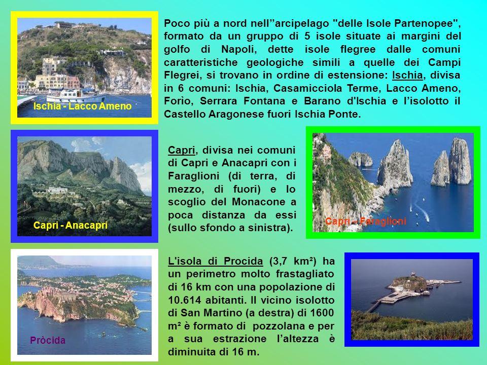 Poco più a nord nell''arcipelago delle Isole Partenopee , formato da un gruppo di 5 isole situate ai margini del golfo di Napoli, dette isole flegree dalle comuni caratteristiche geologiche simili a quelle dei Campi Flegrei, si trovano in ordine di estensione: Ischia, divisa in 6 comuni: Ischia, Casamicciola Terme, Lacco Ameno, Forìo, Serrara Fontana e Barano d Ischia e l'isolotto il Castello Aragonese fuori Ischia Ponte.