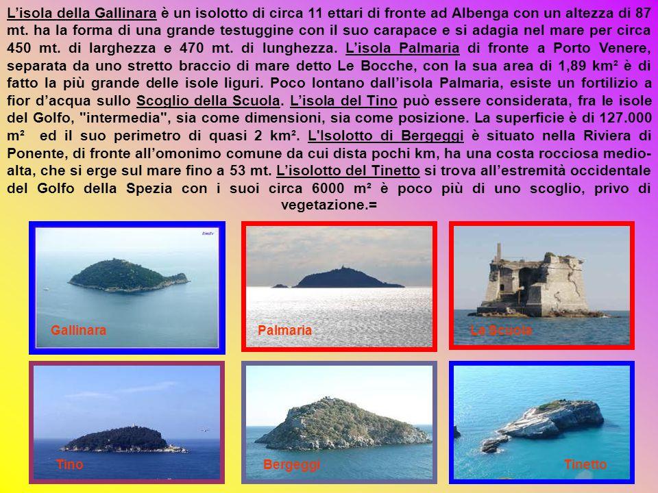 L'isola della Gallinara è un isolotto di circa 11 ettari di fronte ad Albenga con un altezza di 87 mt. ha la forma di una grande testuggine con il suo carapace e si adagia nel mare per circa 450 mt. di larghezza e 470 mt. di lunghezza. L'isola Palmaria di fronte a Porto Venere, separata da uno stretto braccio di mare detto Le Bocche, con la sua area di 1,89 km² è di fatto la più grande delle isole liguri. Poco lontano dall'isola Palmaria, esiste un fortilizio a fior d'acqua sullo Scoglio della Scuola. L'isola del Tino può essere considerata, fra le isole del Golfo, intermedia , sia come dimensioni, sia come posizione. La superficie è di 127.000 m² ed il suo perimetro di quasi 2 km². L Isolotto di Bergeggi è situato nella Riviera di Ponente, di fronte all'omonimo comune da cui dista pochi km, ha una costa rocciosa medio-alta, che si erge sul mare fino a 53 mt. L'isolotto del Tinetto si trova all'estremità occidentale del Golfo della Spezia con i suoi circa 6000 m² è poco più di uno scoglio, privo di vegetazione.=